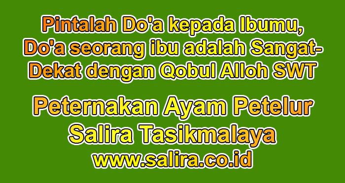 Pintalah Do'a kepada Ibumu, Do'a seorang ibu adalah Sangat Dekat dengan Qobul Alloh SWT