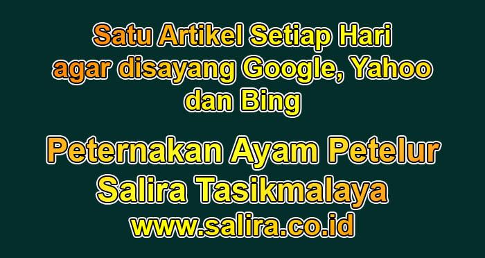Satu Artikel Setiap Hari agar disayang Google, Yahoo dan Bing