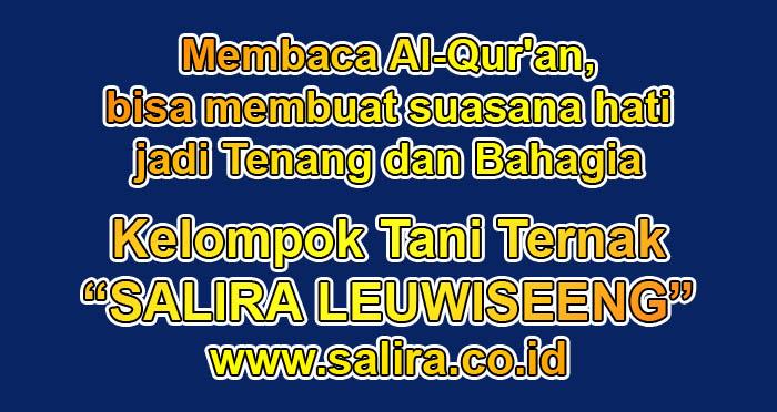 Bagi Muslim, Membaca Al-Qur'an itu mampu membuat suasana hati jadi Tenang dan Bahagia