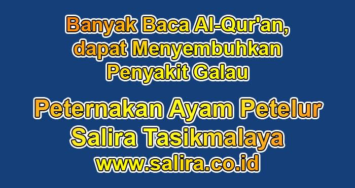 Banyak Baca Al-Qur'an, dapat Menyembuhkan Penyakit Galau