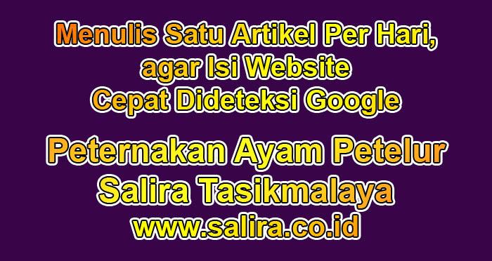 Menulis Satu Artikel Per Hari, agar Isi Website Cepat Dideteksi Google
