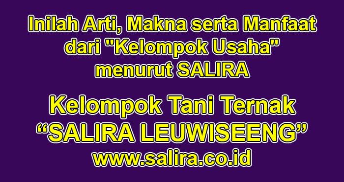 """Inilah Arti, Makna serta Manfaat dari """"Kelompok Usaha"""" menurut SALIRA"""