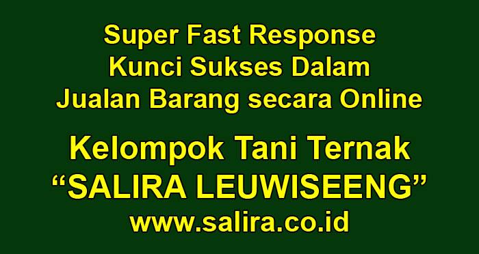 Super Fast Response, Kunci Sukses Dalam Jualan Barang secara Online