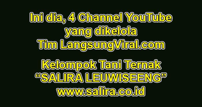 Ini dia, 4 Channel YouTube yang dikelola Tim LangsungViral.com
