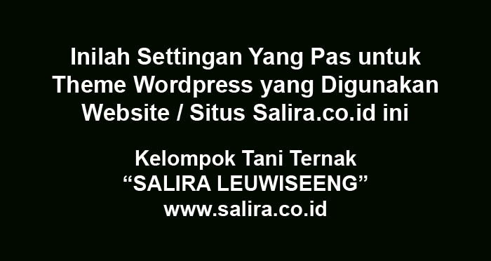 Inilah Settingan Yang Pas untuk Theme WordPress yang Digunakan Website / Situs Salira.co.id ini