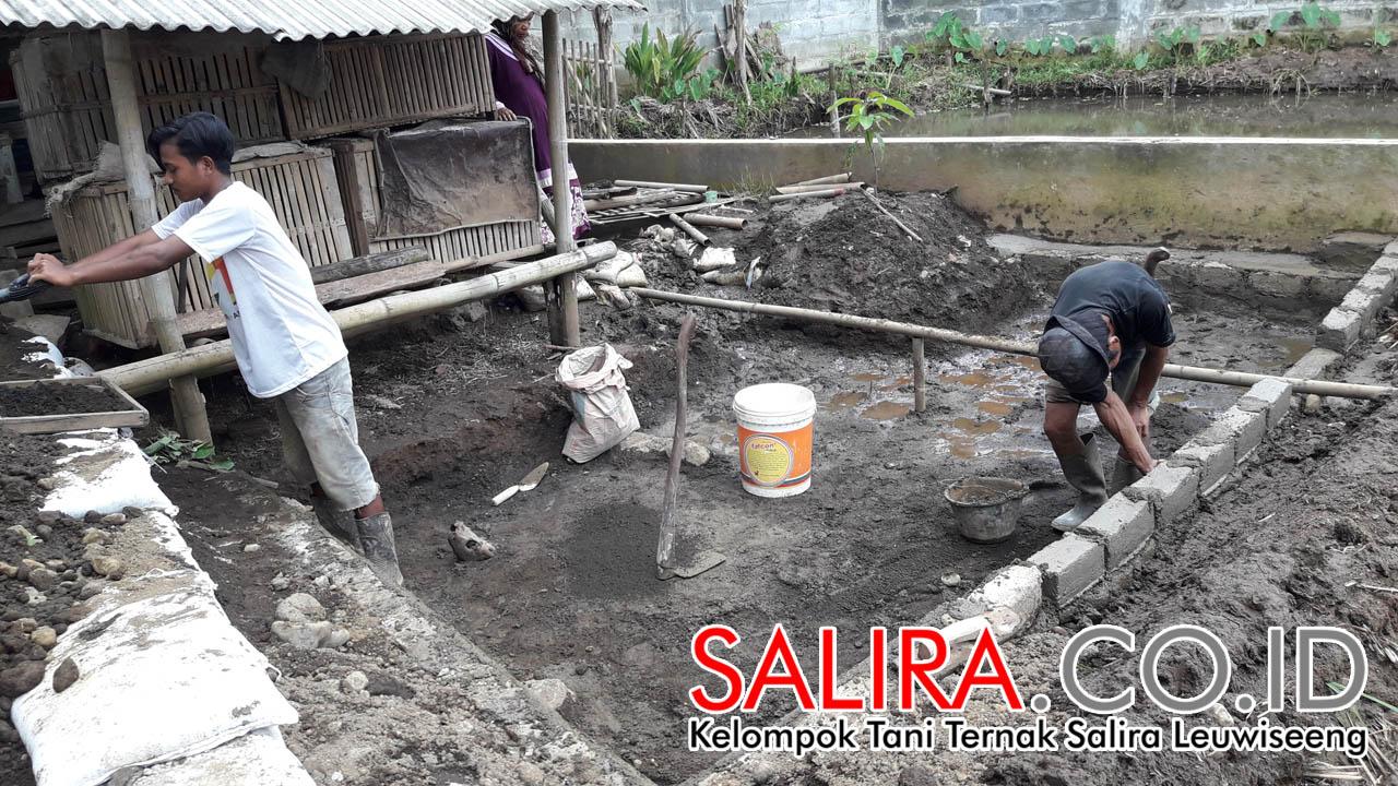 Pembuatan Area Kolam Dalam atau Gomlangan untuk Kolam Sawah Mina Padi Salira